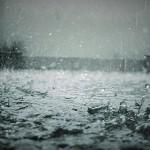梅雨入りから続く雨による被害