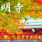 京都通に聞いたおすすめの紅葉名所《西明寺》