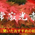 京都通に聞いたおすすめの紅葉名所《常寂光寺》