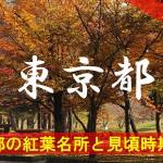 東京都の気になる紅葉名所と見頃時期は?