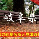 岐阜県の気になる紅葉名所と見頃時期は?