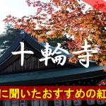 京都通に聞いたおすすめの紅葉名所《十輪寺》