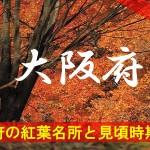 大阪府の気になる紅葉名所と見頃時期は?