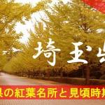 埼玉県の気になる紅葉名所と見頃時期は?