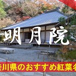 北鎌倉にある明月院の紅葉 円窓からの紅葉が有名