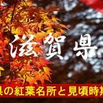 滋賀県の気になる紅葉名所と見頃時期は?