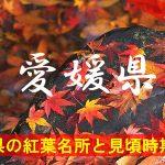 愛媛県の気になる紅葉名所と見頃時期は?