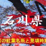 石川県の気になる紅葉名所と見頃時期は?