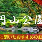 京都通に聞いたおすすめの紅葉名所《円山公園》