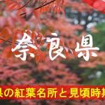 奈良県の気になる紅葉名所と見頃時期は?