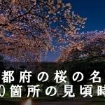 京都府の醍醐寺など桜名所170箇所の見頃時期