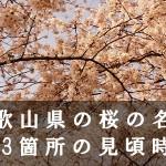 和歌山県の亀池など桜名所113箇所の見頃時期