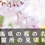 群馬県の伊香保など桜の名所83箇所の見頃時期
