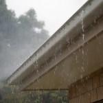 2015年 奄美地方が9年振りに沖縄よりも早く5月19日に梅雨入り!