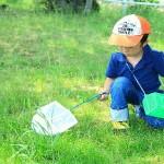 自由研究!6年生が1日でできるテーマとは?理科実験・家庭科・工作・歴史・社会・野菜など10選