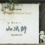 福岡市西区豊浜の山法師で絶品ランチを食べてきました