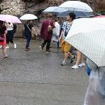 雨の日の東京ディズニーランドの楽しみ方と雨具対策方法