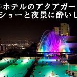 杉乃井ホテルのアクアガーデンで噴水ショーと夜景に酔いしれる